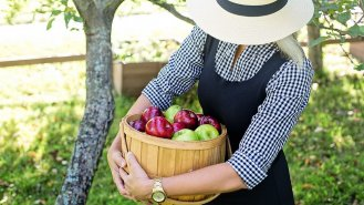 5 koníčků, které přispívají k dobré náladě