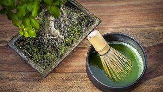 7 důvodů, proč pít Matcha Tea