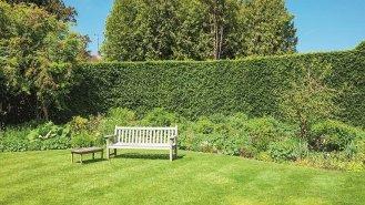 10 kroků k založení dokonalého trávníku