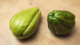 Čajot: Zelený poklad ze Střední Ameriky