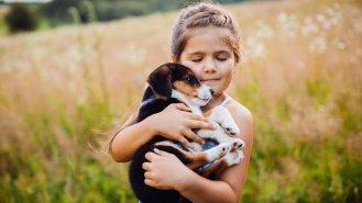 7 rad při výběru a pořízení štěněte