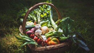 Všechno, co jste (ne)věděli o zelenině