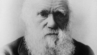 Charles Darwin: Vědec, který dokázal, že člověk pochází zopice
