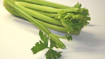Řapíkatý celer: Pomocník při boji snadváhou i účinné afrodiziakum