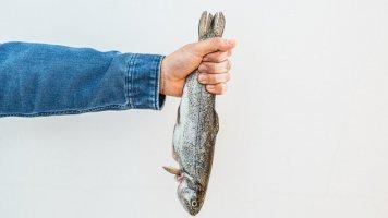 5 rad, jak vybírat, skladovat a upravovat ryby