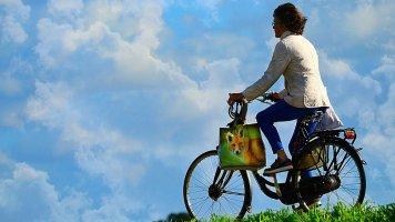 5 rad, jak se vyhnout podzimnímu stresu