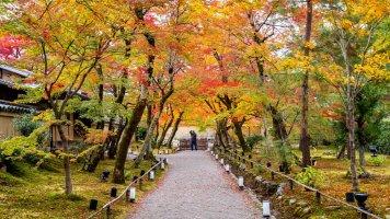 Patero rad, jak fotit podzim