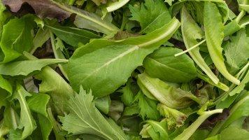 3 druhy zeleniny, které musí být v každém jarním salátu