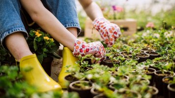 Hurá, zahrada volá!