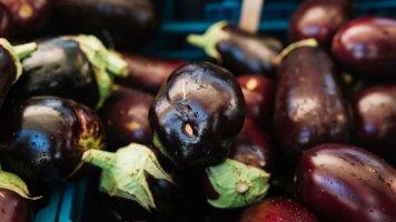 Lilek neboli baklažán je vlastně ovoce