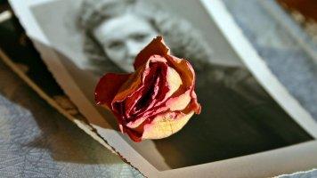 Příběh Evy (60): Vzpoura prababičky Josefky