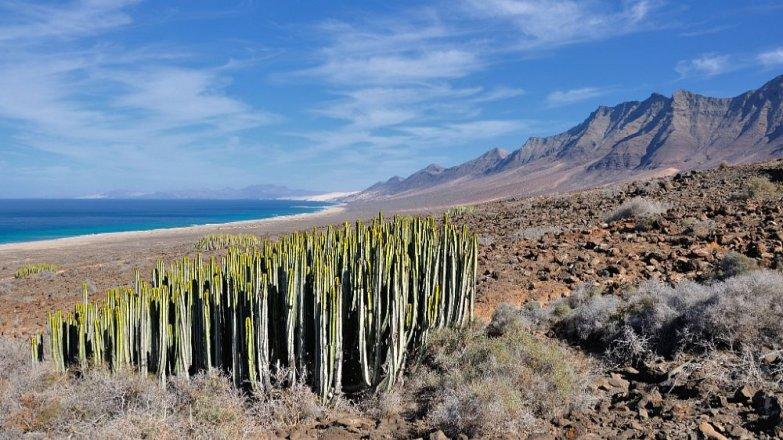 Fuerteventura: Ideální místo pro podzimní dovolenou