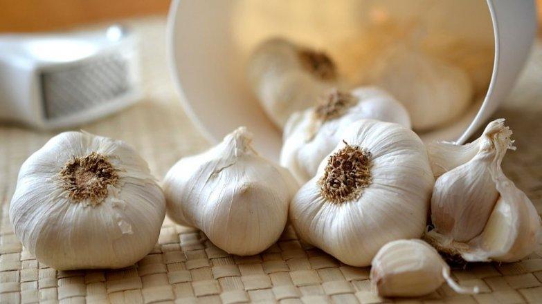 Česnek: Přírodní antibiotikum