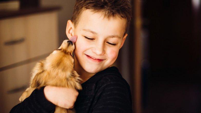 6 pravidel soužití dětí a štěňat