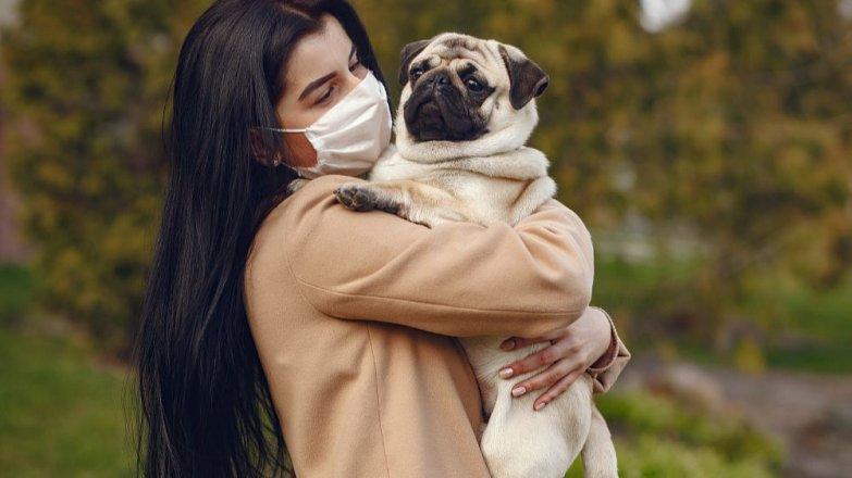 6 rad, jak se starat o pejska s chřipkou
