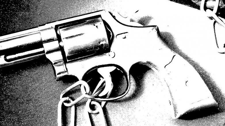 Elvira Barney: Nešťastná náhoda, nebo vražda?