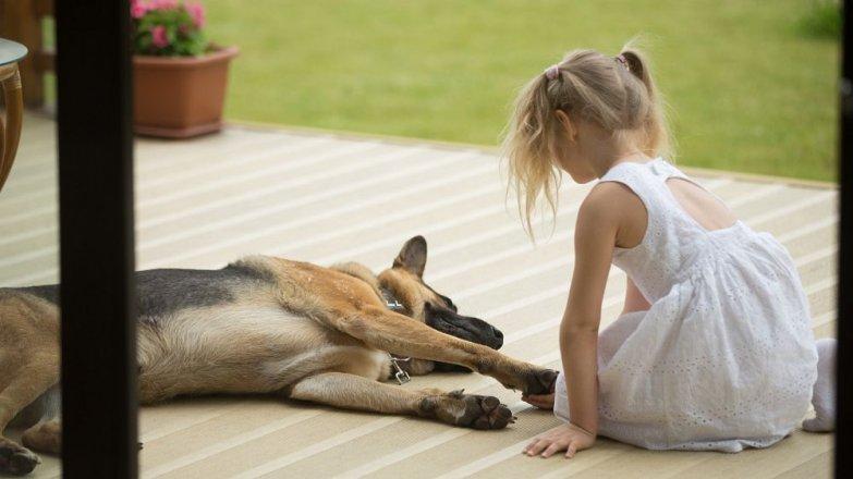 Příběh Jany (33): Pes nám zachránil život!