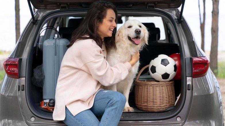 8 rad pro cestování se psem