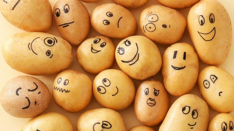 Není brambor jako brambor